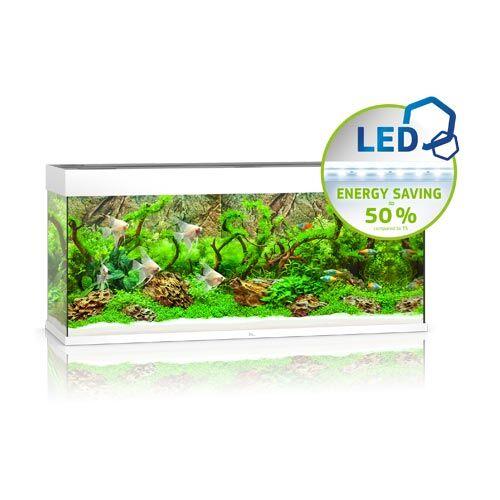 juwel rio led 240 aquarium set wei aquarium set zoo zajac. Black Bedroom Furniture Sets. Home Design Ideas