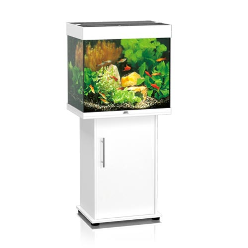 juwel lido 120 aquarium set sbx wei 120 l kaufen zoo zajac. Black Bedroom Furniture Sets. Home Design Ideas