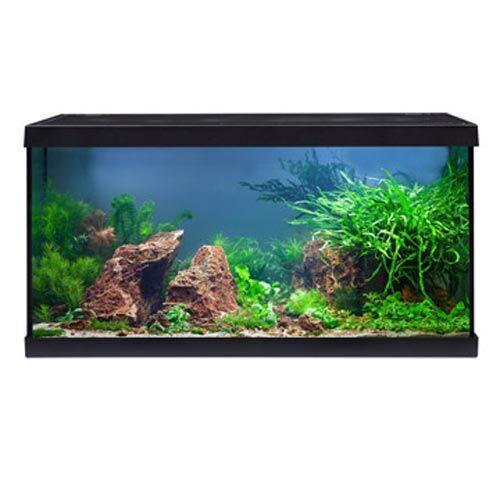 eheim aquastar 54 led komplettset schwarz aquarium set zoo zajac. Black Bedroom Furniture Sets. Home Design Ideas
