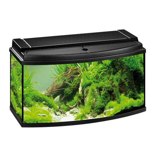 Aquarium 80 x 30 x 40 cm 28 images aquarium abdeckung for Meuble aquarium 100 x 30