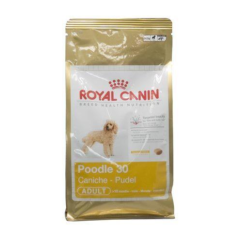 royal canin poodle 30 500g zoo zajac. Black Bedroom Furniture Sets. Home Design Ideas