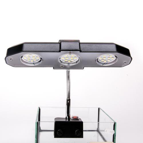 sera led light 6w zoo zajac. Black Bedroom Furniture Sets. Home Design Ideas