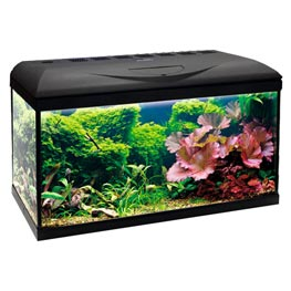 Wave Basic LED 80 Komplettaquarium Black  95 Liter