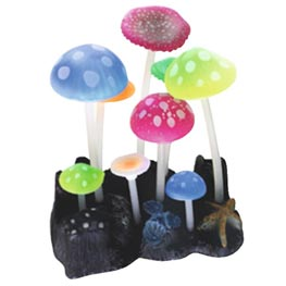 Wave Fluo Reef Dekoration Mushrooms  9,8x7,5x11cm