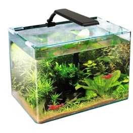 Wave Box Orion 40 LED 40x25x28cm  25l