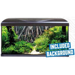 Amtra System 80 LED Black Aquarien Set & Root Background