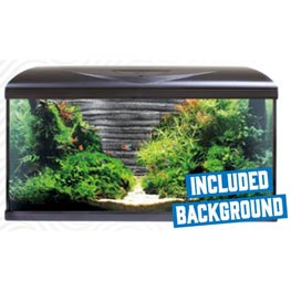 Amtra System 80 LED Black Aquarien Set & Rock Background