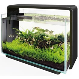 SuperFish: Home 60 Aquarium-Set schwarz 60 Liter  58.5 x 32 x 42.5 cm
