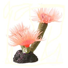 TMC Natureform Feather Duster Pink 3,5x3x8cm