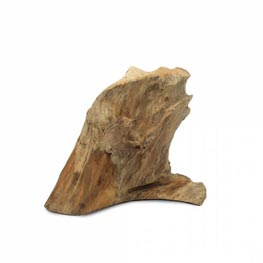 Back Zoo Nature Teak Wurzel Gr. L  40-50cm