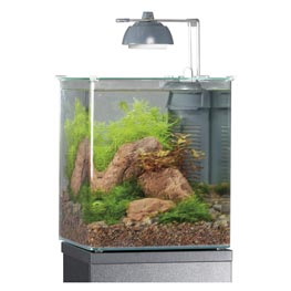 Eheim  Aquastyle 16 Glasbecken 24 x 24 x 28 cm