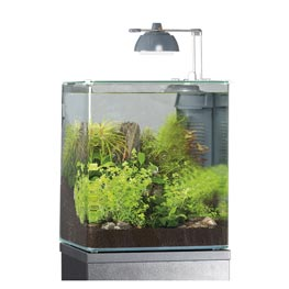 Eheim Aquastyle 24 Glasbecken 24 x 24 x 28 cm