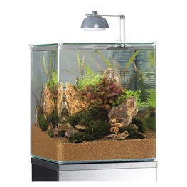 Eheim: Aquastyle 35 Glasbecken  31x31x36cm