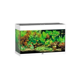 Juwel Rio 125 LED Aquarium Set  Weiß