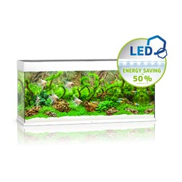 Juwel Rio LED 240 Aquarium Set weiß