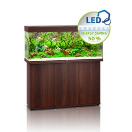Juwel Rio LED 240 SBX dunkles Holz Aquariumkombination
