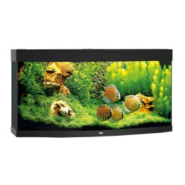 Juwel Vision 260 LED Aquarium Set schwarz