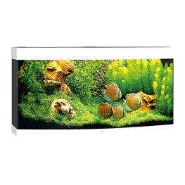 Juwel Vision 260 LED Aquarium Set weiß