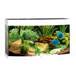 Juwel Vision 180 LED Aquarium Set weiß
