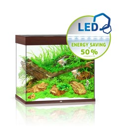 Juwel Lido 200 LED Aquarium Set dunkles Holz