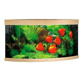 Juwel Trigon 350 LED Aquarium Set helles Holz