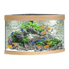 Juwel Trigon 190 LED Aquarium Set helles Holz