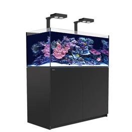Red Sea Reefer Deluxe 425 schwarz mit LED Beleuchtung