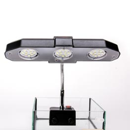 Sera: LED Light  6W